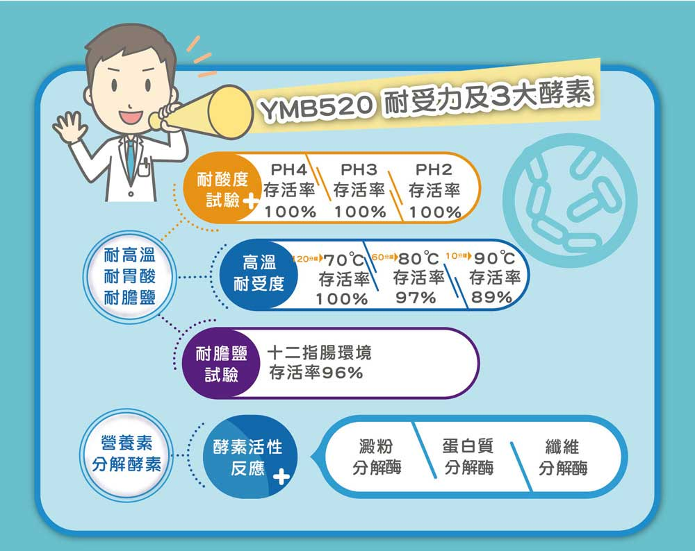 YMB520 耐受力及三大酵素